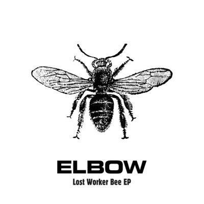 Lost Worker Bee EP